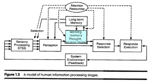 A model of human information processes